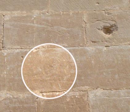 06.08.2008 Grafit d'una fulla o ploma localitzada en un dels murs de la Porta dels Apòstols.  Seu Vella de Lleida -  Jordi Bibià
