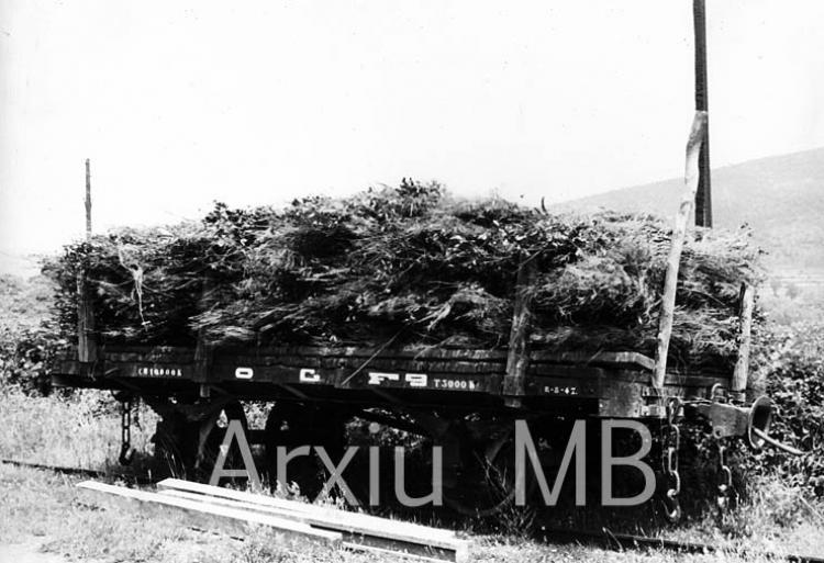 24.09.2014 El tren d'Olot. Vagó plataforma.  -  Miquel Bibià Laplana