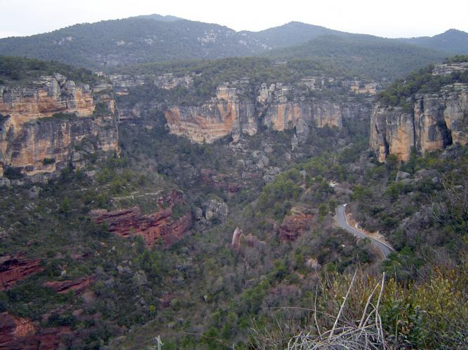 06.05.2017   Serra de Prades -  Jordi Bibià