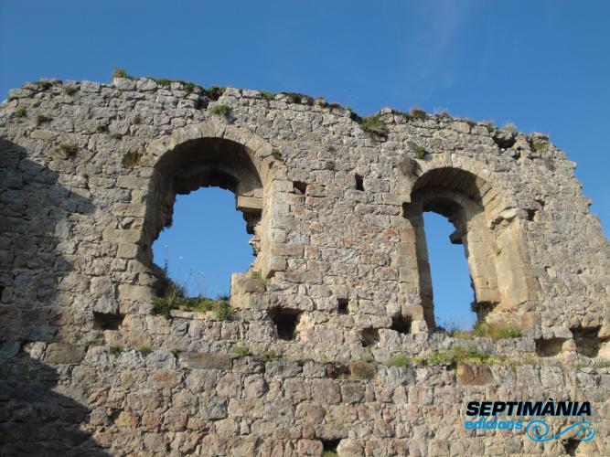 02.08.2018 Panys de paret a la part superior del mur.  Rocafixada -  Jordi Bibià