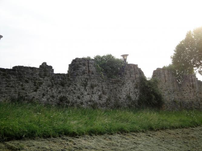 03.09.2019 Pany de paret que encara es conserva del castell enderrocat.  -  Jordi Bibià