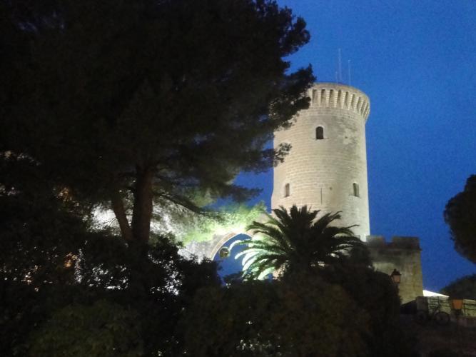 26.12.2019 Castell de Bellver  -  Jordi Bibià
