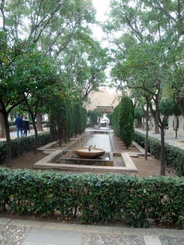 29.01.2020 Jardin sota el Palau de l'Almudaina.  -  Jordi Bibià