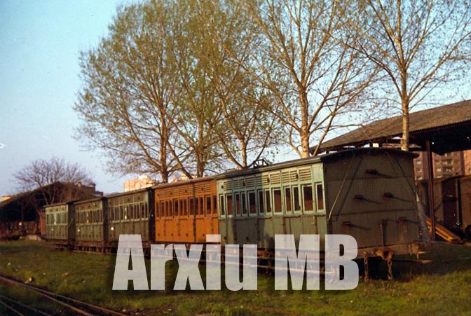 30.11.-0001 El tren d'Olot  -  Miquel Bibià