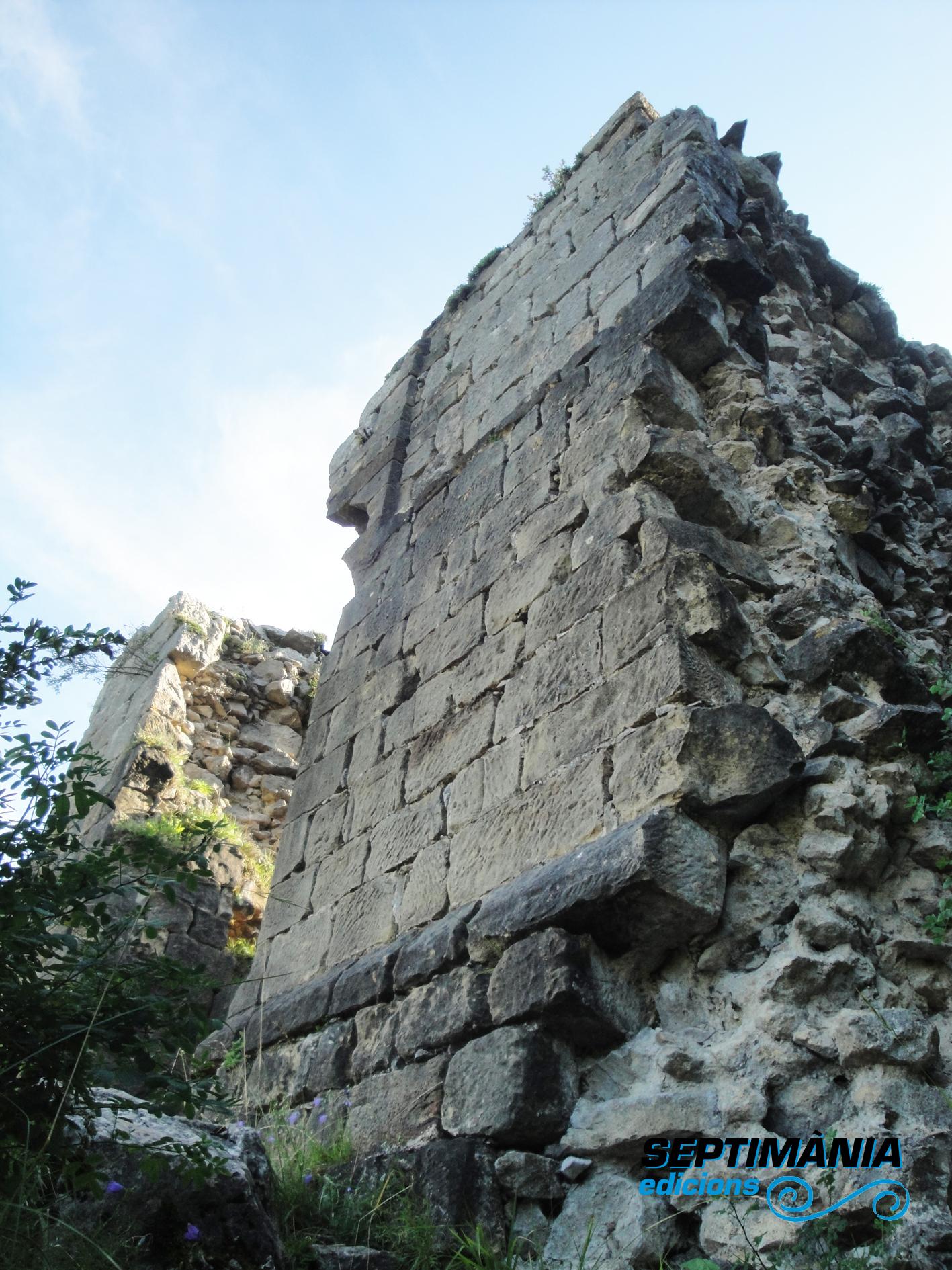 02.08.2018 Panys de paret del castell.  Rocafixada -  Jordi Bibià