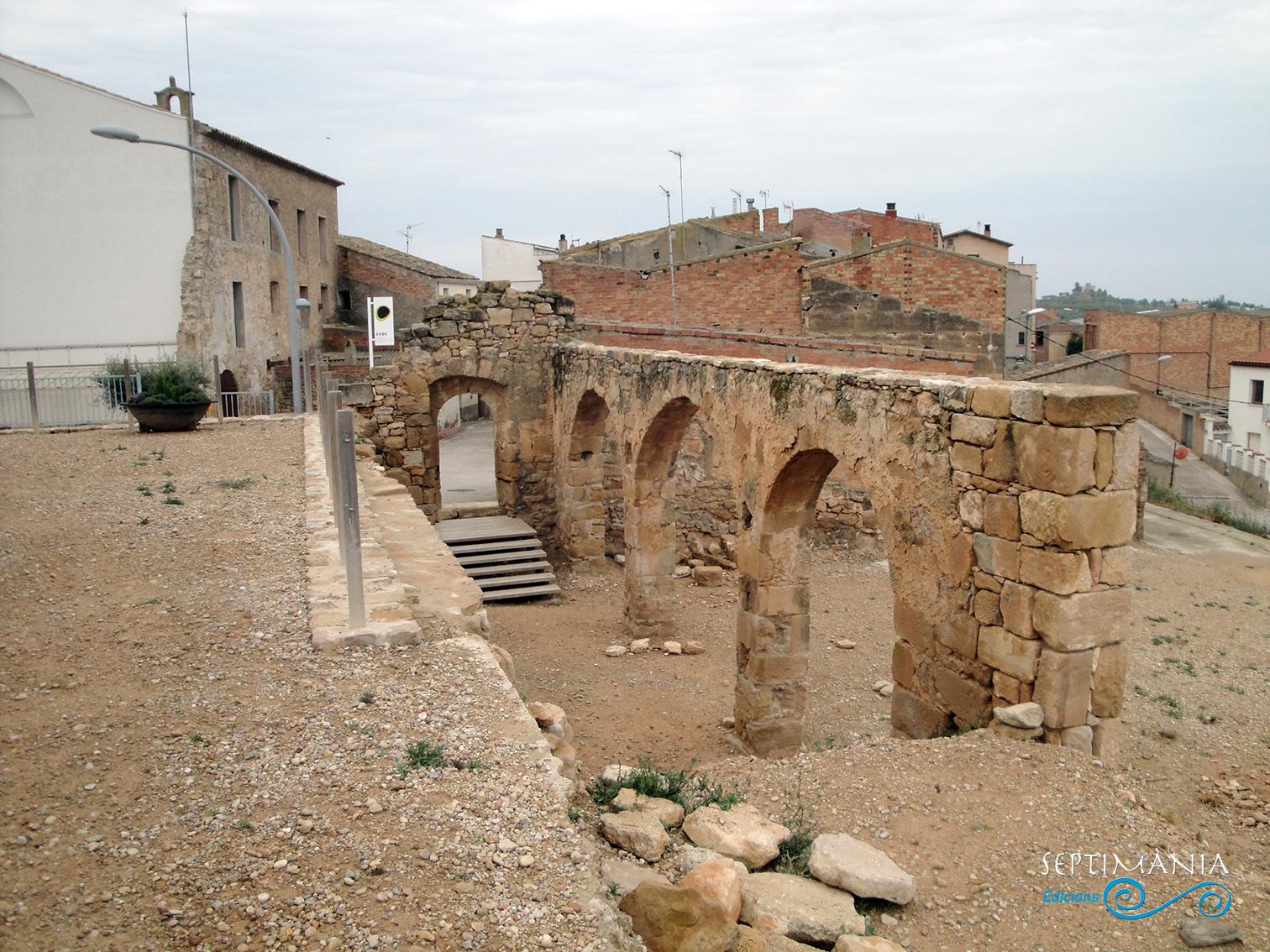 22.04.2019 Una de les poques restes que queden del castell. Possiblement acollí les cavallerisses.  La Granadella. -  Jordi Bibià