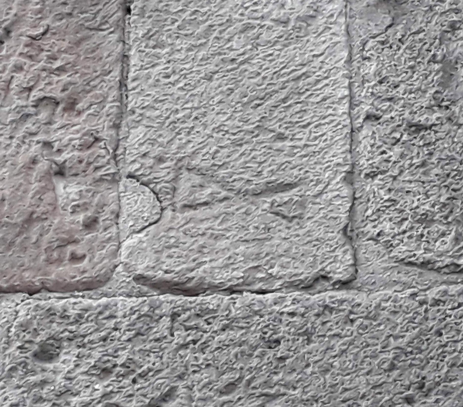 31.08.2019 Marca comú de picapedrer.  Catedral de Barcelona -  Jordi Bibià