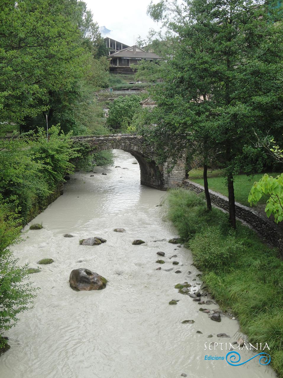 31.05.2021 El riu bastareny  -  Autor